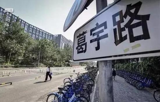 2017年5月,中央美院研究生葛宇路以自己的名字命名了一条小路。 本文图片 北京晚报
