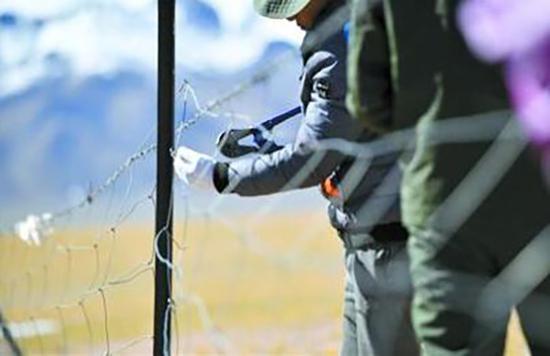 西藏那曲市尼玛县林业公安在拆除网围栏。