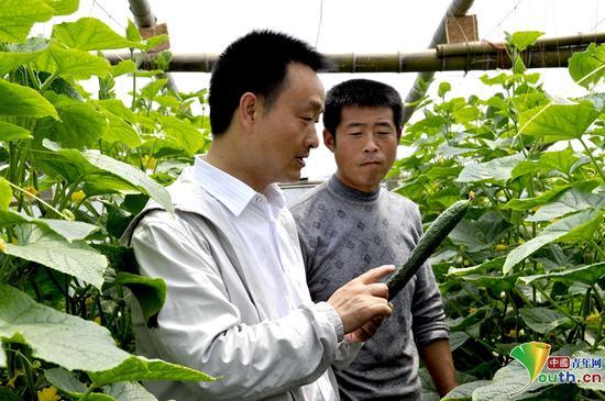 裴春亮(左)在了解蔬菜生产情况。本人供图