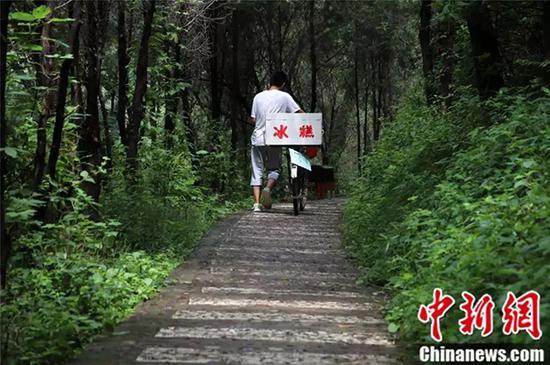 赵龙的家乡植被丰富,环境清幽。
