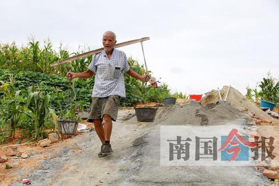 6月20日清晨6时,79岁的刘业善就开始挑水泥浆铺路了。 南国今报 图