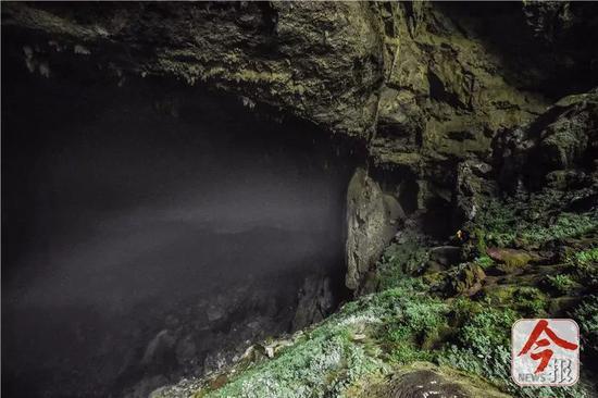 弄乐天坑底部的巨大洞穴,蒸腾着深不可测的迷雾。