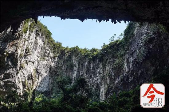 弄乐天坑周沿皆为悬崖峭壁,仰望如坐井观天。