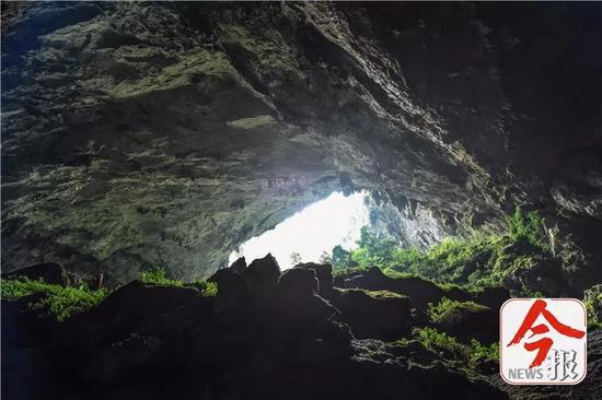 弄乐天坑底部的洞穴入口。