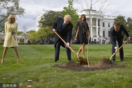 """當地時間2018年4月23日,川普與馬克龍在白宮種下""""友誼之樹""""。圖片來源:視覺中國"""