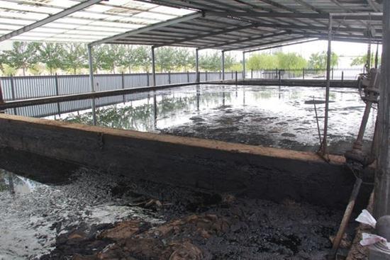 图3 杰瑞邦达公司油泥危废违规堆存