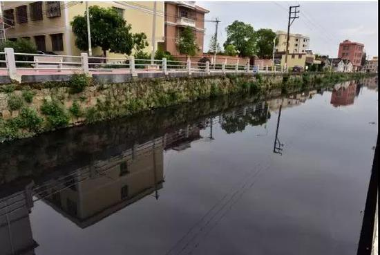 汕头市潮阳区练北大坑水体严重黑臭