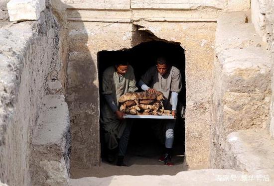 视频 埃及新发现7座古墓葬 4500年前的猫咪木