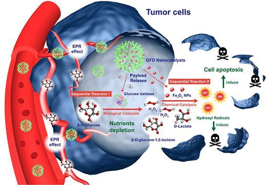 基于纳米催化剂的连锁催化反应用于肿瘤治疗的示意图