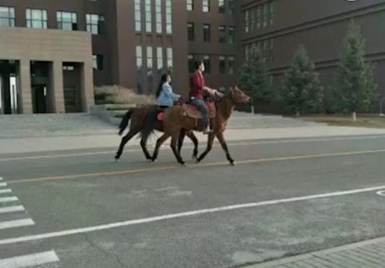情侣在内蒙古大学校园骑马 网友:骑马上学被坐实