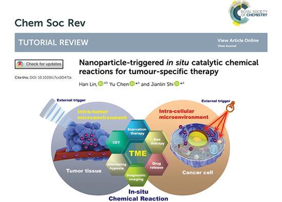 论文首页和概括性示意图:肿瘤微环境和外场触发的纳米粒子原位催化化学反应用于肿瘤特异性治疗