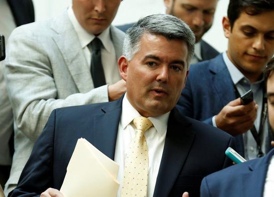 美國聯邦參議院外交委員會亞太小組主席賈德納。