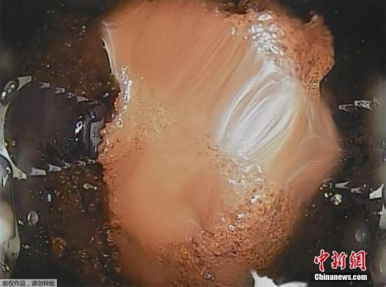 必赢彩票中过大奖吗 - 中国茶叶流通协会会长王庆:重振红茶出口辉煌,英德有经验有基础