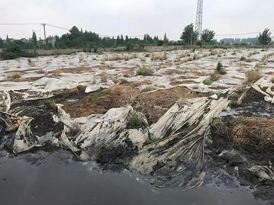 污泥堆存现场触目惊心。