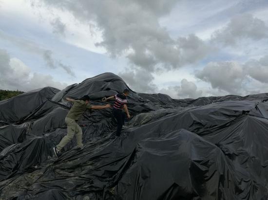 图6 阳江江城区白沙街道露天垃圾场未清运的含镍污泥