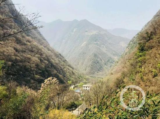 图为3月的秦岭,熊猫主要栖息地