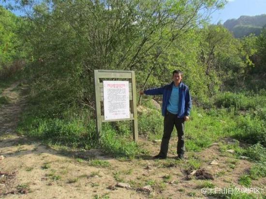 被罚款3000元的郭某指认登山入口处。陕西省林业厅供图