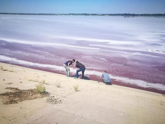 监察组监测人员在黑臭水体里采样,进行水样监测。