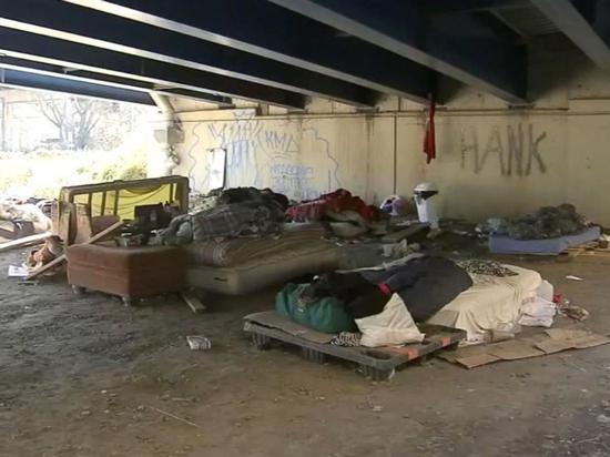 小博比特曾住在加油站附近的天桥下 图自ABC新闻网