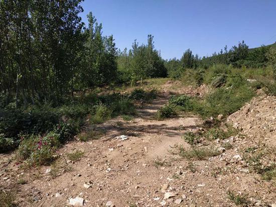 环境部:中石油管道擅改走向 非法穿越自然保护区