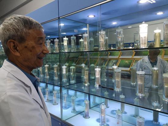 5月29日,董学书在云南省寄生虫病防治所的蚊子标本室。新京报记者 吴靖 摄