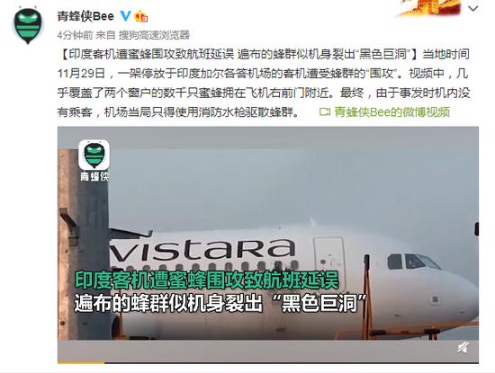 """印度客机遭蜜蜂围攻致航班延误 遍布的蜂群似机身裂出""""黑色巨洞"""""""