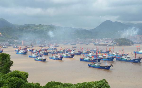 浙江:东海全面开渔 上千渔船开赴渔场