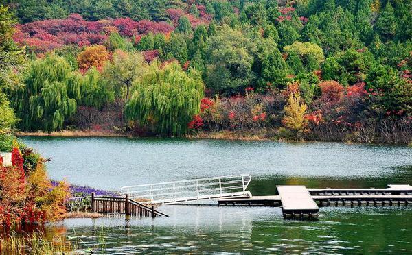 北京图见|这个秋天,来金海湖欣赏湖景秋色