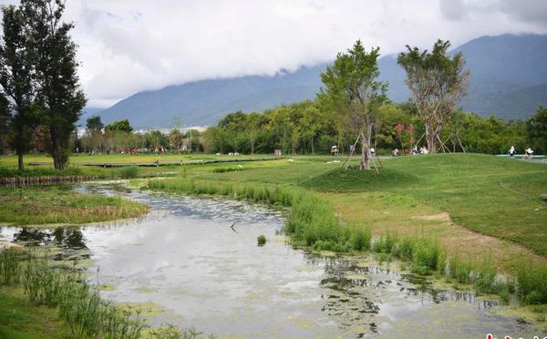 大理建洱海生态廊道 为洱海围上绿色围巾
