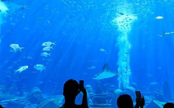 海南三亚迎来暑期旅游旺季