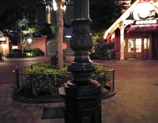 上海迪士尼度假区内的路灯灯柱。 王先生供图
