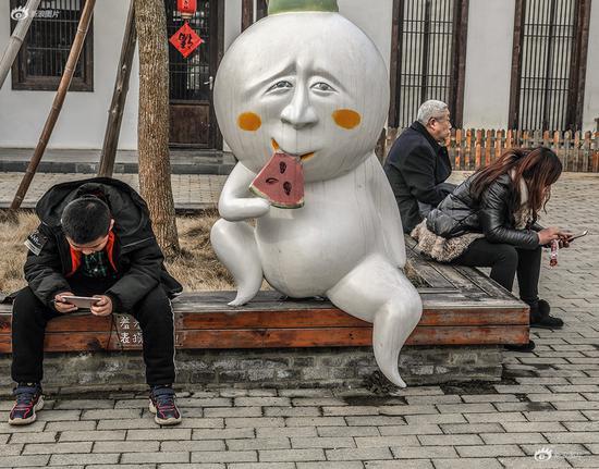 《吃瓜群众》摄影:@哈哈影像社 拍摄时间:2019年2月5日 拍摄地点:安徽省巢湖