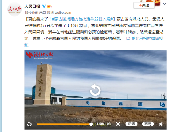 真的要来了!蒙古国捐赠的首批活羊22日入境图片