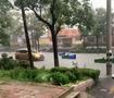 高密暴雨水漫大街