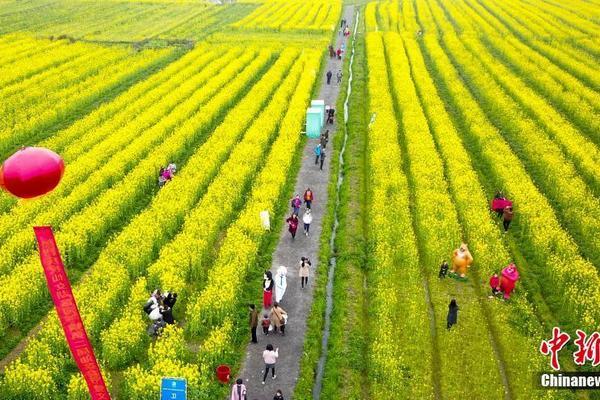 北京:汲取黄某英进京事件教训,严把进京通道入口关