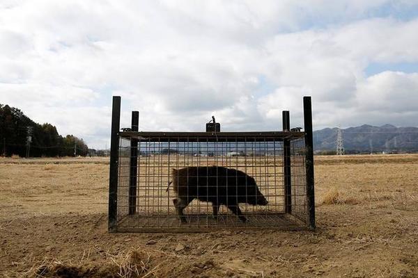 【王者手游公司入款】内蒙古乌海市发生小汽车侧翻事故 致3死3伤