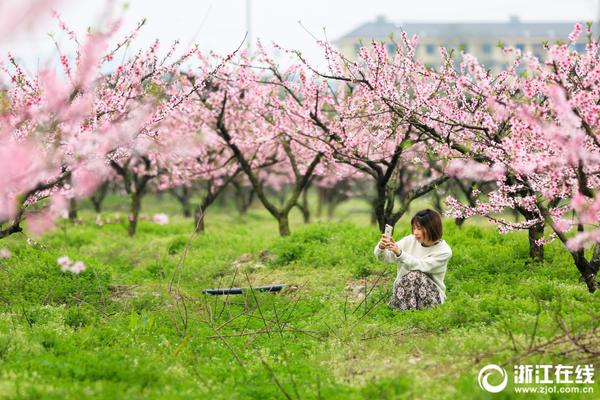 small cherry picker for sale