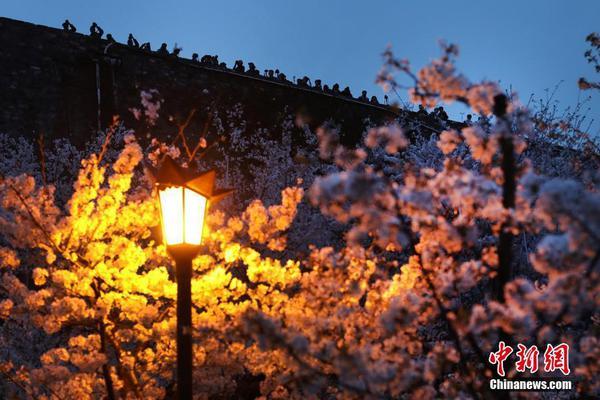 松岛枫图片