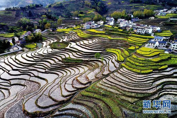 一国生产单位小麦需要投入劳动力和土地数量分别为1和5,而生产单位纺织品需要投入劳动力和土地数量分别为2和6。则对于该国而言(    )。