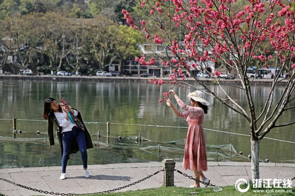北京市开出生活垃圾分类执法处罚第一单 罚款9000元