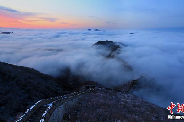 甘肃肃南发现5处岩画 文物局正在核实具体信息