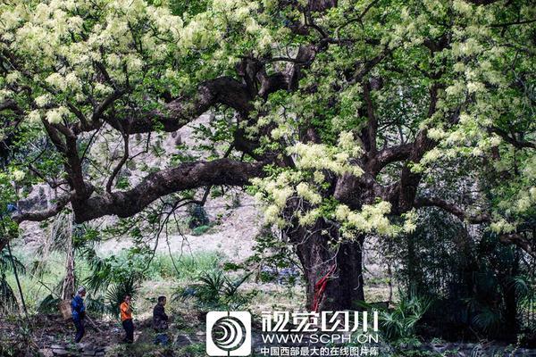 钟南山:估计全球疫情至少延续到6月份,还提到了这个省