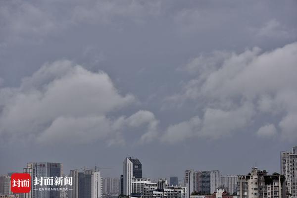 北京动物园猴子抱团取暖