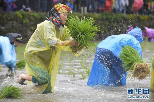 北京市开出生活垃圾分类执法处罚第一单 罚款9千元