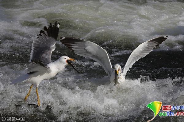 黑龙江牡丹江市林口县报告4例无症状感染者