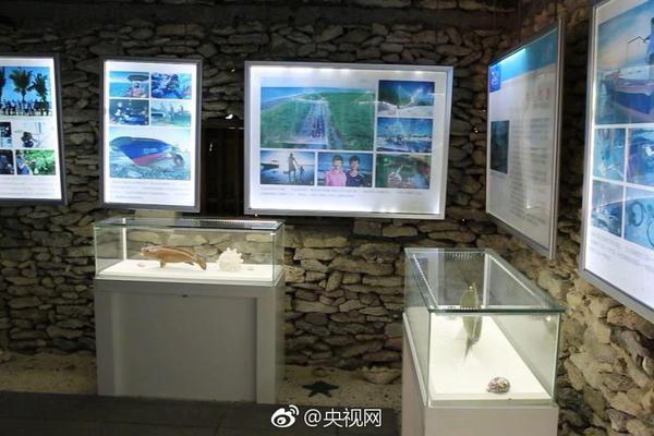 習近平江蘇行|千年運河 流向未來