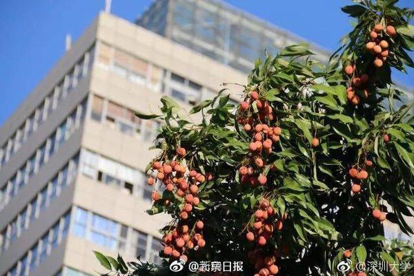港媒:香港新增约11个确诊病例 一名中学生感染