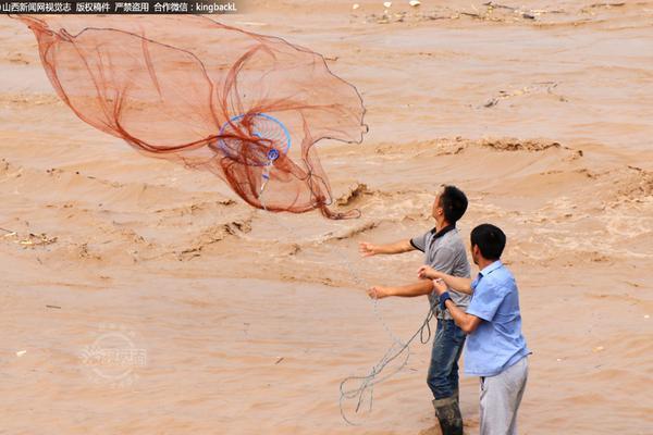 【森林大舞会】外国网友又被中国挖掘机技术惊呆了:这是杂技吗?