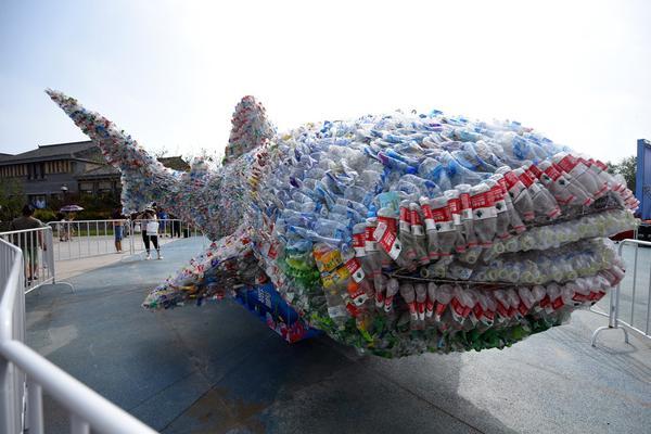 """""""猪坚强""""情况很糟了,建川博物馆:会考虑实施安乐死"""