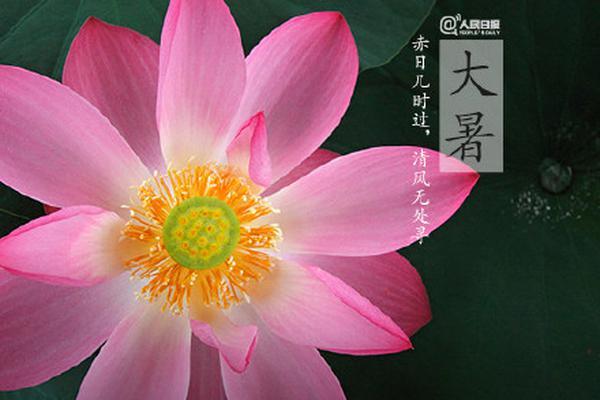 中超-广州队3-1重庆 韦世豪建功